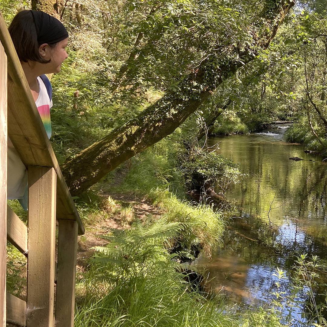 Que ver en O Pino. Turismo. Senda botánica do río Mera